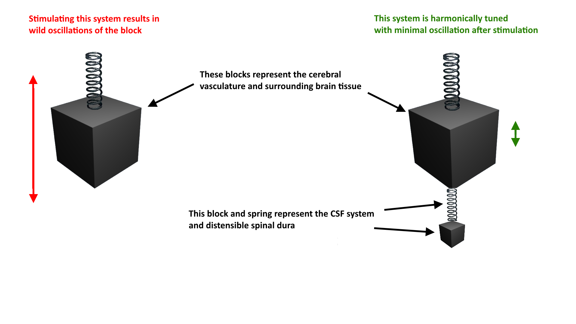 csf system is harmonically tuned